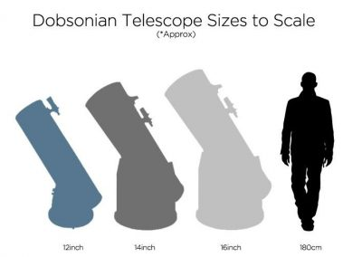dobsonian-to-scale-2.jpg